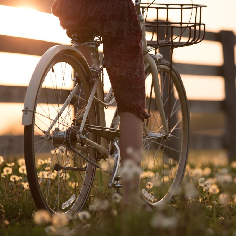 In bicicletta nel verde a Lignano